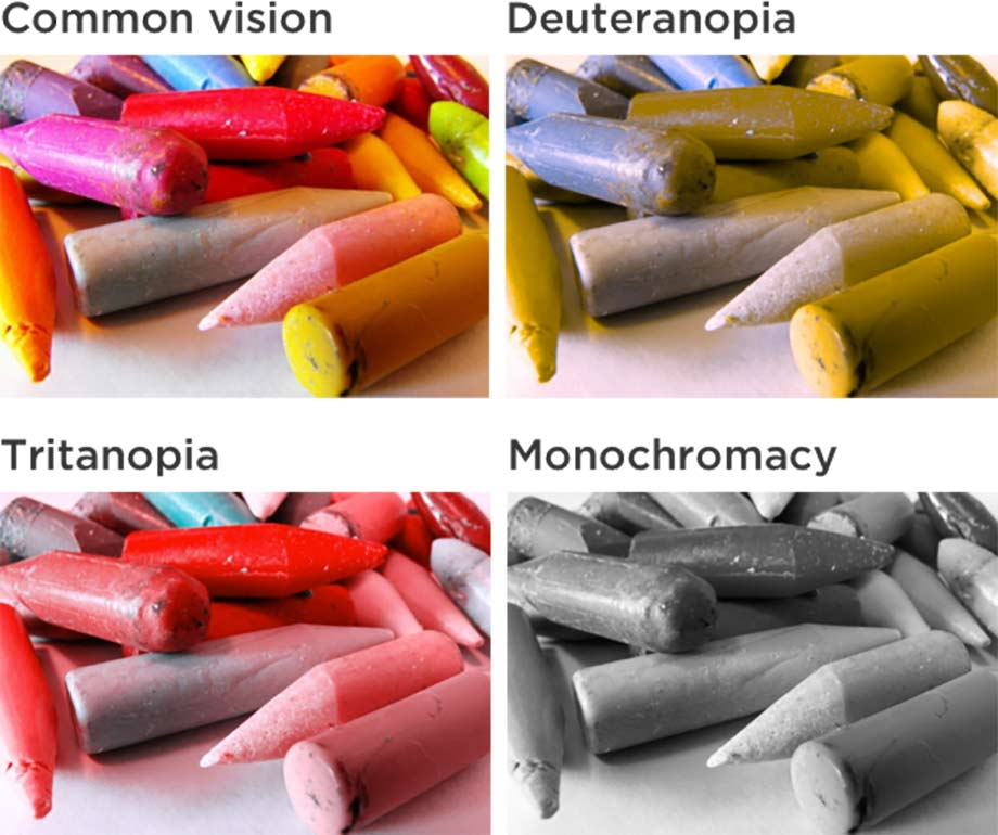 examples of common colour vision, deuteranopia, tritanopia and monochromacy