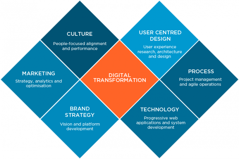 Cyber-Duck Digital Transformation Model