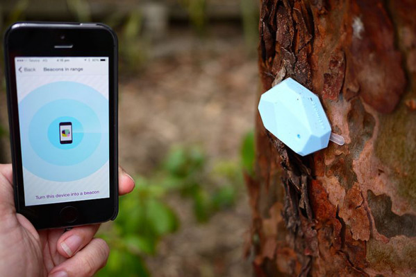 iBeacon example on a tree outdoors
