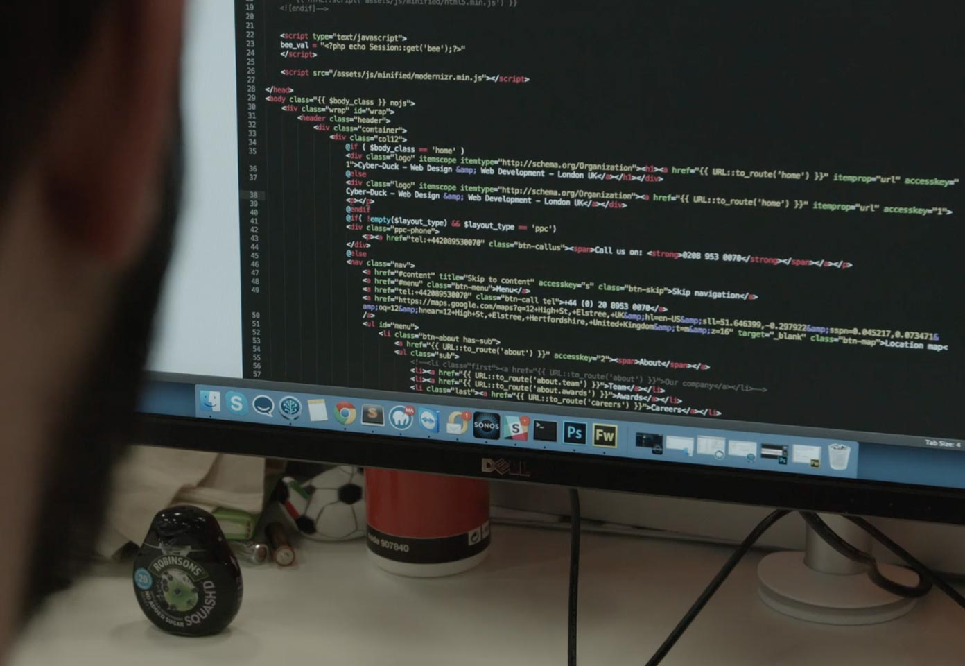 Cyber-Duck web developer reviewing code on desktop